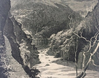 1890 The Descent to the Dargo Original Antique Engraved Illustration - Australia - Landscape - Decorative Wall Art - Available Framed