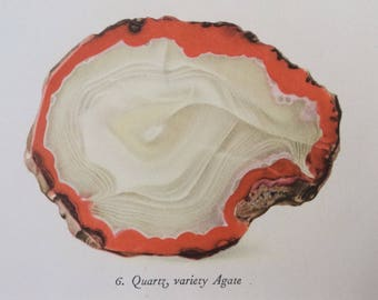 1952 Quartz Variety Agate Original Vintage Print - Mounted and Matted - 8 x 10 inches - Mineralogy - Crystals - Available Framed