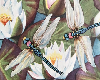 1940s Dragonfly Original Vintage Print - Mounted and Matted - Vintage Insect Art - Water Lily - Dragonflies - Available Framed