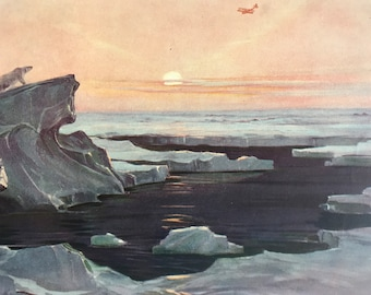 1927 Flying over the Polar Wastes Original Vintage Print - Polar Bear - Iceberg - Arctic - Mounted and Matted - Available Framed