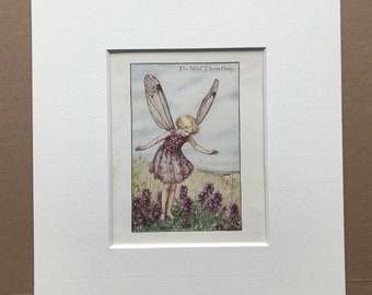 1936 The Wild Thyme Fairy Original Vintage Print - Flower Fairy - Cicely Mary Barker - Mounted and Matted - Available Framed