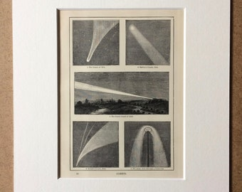 1900 Comets Original Antique Print - Mounted and Matted - Available Framed - Astronomy - Halley's Comet - Star Map - Astrology