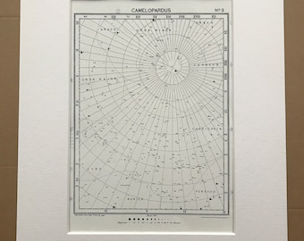 1923 Camelopardus Original Antique Print - Star Map - Astronomy - Constellation - Zodiac - Mounted and Matted - Available Framed