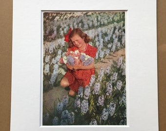 1940s Dutch Girl in field of Hyacinths Original Vintage Print - Mounted and Matted - Portrait Photography - Haarlem - Available Framed