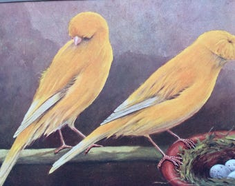 1911 Canary Original Antique Lithograph - Clear Yellow Crest-Bred and Crested - Ornithology - Bird Art - Wall Decor - Home Decor - Wall Art