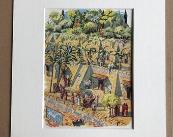 1940s Babylon Hanging Gardens Illustration Original Vintage Print - Mounted and Matted - Botanical Art - Botany - Available Framed