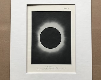 1913 Solar Corona Original Antique Print - Sun - Astronomy -  Mounted and Matted - Available Framed