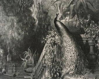 1870 Fontaine's Fables Original Antique Gustave Dore Engraving - Mounted and Matted - Literature Illustration - Available Framed