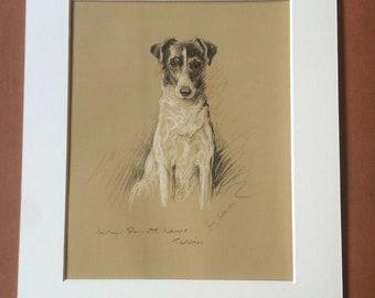 1937 Smooth-Haired Terrier Original Vintage Dog Illustration - Lucy Dawson - Animal Art - Dog Drawing - Framed Art - Dog Lover Gift Idea