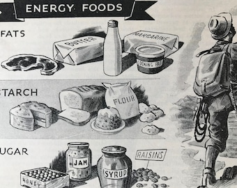 1940s Energy Foods Original Vintage Illustration - Mounted and Matted - Nutrition - Health - Fats, Starch, Sugar - Available Framed