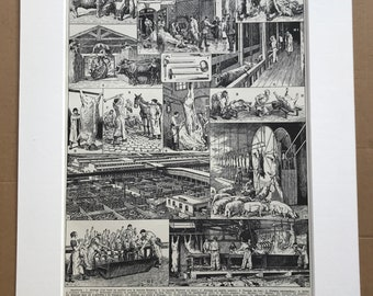 1928 Abattoir Original Antique Print - Slaughter House - Meat Production - Mounted and Matted - Available Framed
