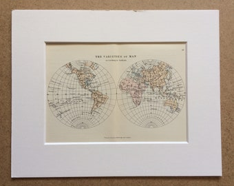 1895 The Varieties of Man Original Antique World Map - Mounted and Matted - 8 x 10 inches - Framed Map - Gift Idea - Framed Vintage Art