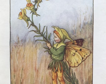 1936 The Toadflax Fairy Original Vintage Print - Flower Fairy - Cicely Mary Barker - Mounted and Matted - Available Framed