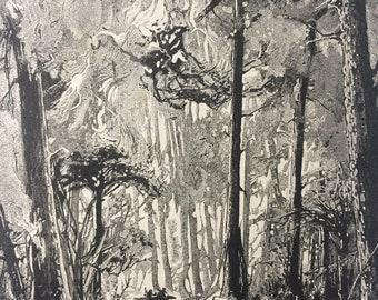 1890 Riding through the burning bush Original Antique Illustration - Australia - Landscape - Decorative Wall Art - Available Framed