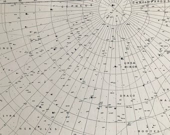 1923 Ursa Minor and Draco Original Antique Print - Star Map - Astronomy - Constellation - Zodiac - Mounted and Matted - Available Framed