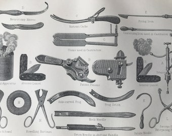 1880 Veterinary Instruments and Apparatus  Original Antique Print - Gift for Vet - Mounted and Matted - Available Framed