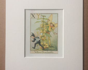 Yellow Deadnettle 1930s Flower Fairy Alphabet Original Vintage Print - Cicely Mary Barker - 8 x 10 inches - Matted & Available Framed