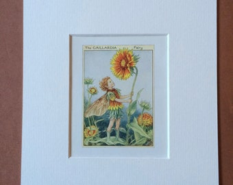 1968 Gaillardia Fairy Original Vintage Print - Flower Fairy - Cicely Mary Barker - Wall Decor - Mounted and Matted - Available Framed