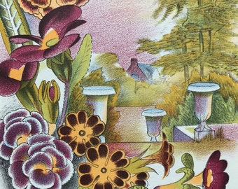1939 Polyanthus Original Vintage Print - Mounted and Matted - Botanical Illustration - Flower Art - Retro Decor - Available Framed
