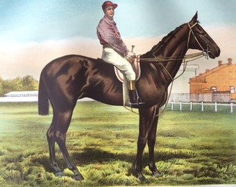 1880 Large Original Antique Matted Lithograph - Race Horse - Horse - Equestrian Decor - Decorative Wall Art - Equine Wall Art