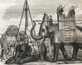 c.1860 Original Antique Print - Uses of the Elephant in Oriental Warfare - Wildlife Natural History - Mounted and Matted - Available Framed