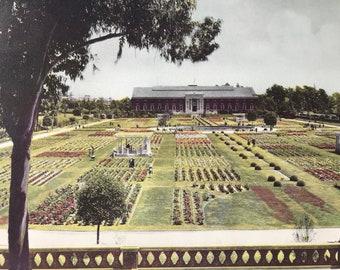 1945 Sunken Gardens in Exposition Park, Los Angeles Original Vintage Photo Print - LA - California - Retro Decor - Available Framed