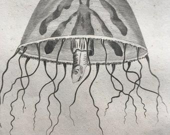 1809 Medusa Campanella or Bell Medusa Original Antique Engraving - Jellyfish - Marine Wildlife - Ocean Decor - Available Matted and Framed