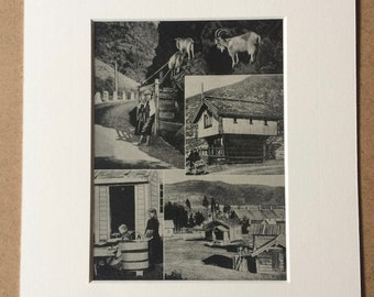 1940s Norwegian Farms Original Vintage Print - Mounted and Matted - Norway - Scandinavia - Farmer - Available Framed