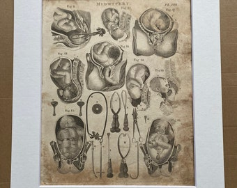 1806 Midwifery Original Antique Engraving - Science - Medical Decor - Gift for Midwife - Mounted and Matted - Available Framed