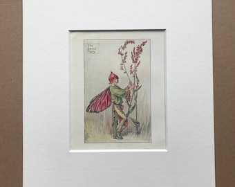 1936 The Sorrel Fairy Original Vintage Print - Flower Fairy - Cicely Mary Barker - Mounted and Matted - Available Framed