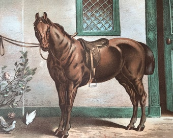 1880 The Roadster Original Antique Print - Horse - Equestrian Decor - Mounted and Matted - Available Framed