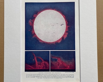 1923 Sunspots, Chromosphere and Prominences Original Antique Print - Astronomy - Mounted and Matted - Available Framed