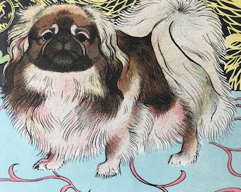 1950 Pekinese Original Vintage Illustration - Maurice Wilson - Animal Art - Dog Drawing - Mounted and Matted - Available Framed