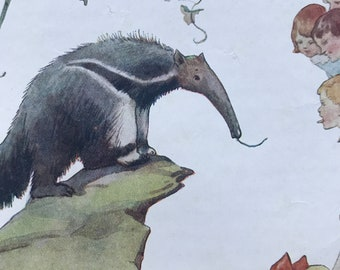 1919 Anteater Original Vintage Margaret W. Tarrant Illustration - Zoo - Animal Art - Available Framed - Nursery Decor - Children's Book