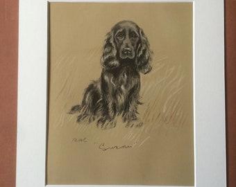 1937 Spaniel Original Vintage Dog Illustration - Lucy Dawson - Animal Art - Dog Drawing - Framed Art - Dog Lover Gift Idea