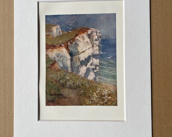 1907 Beachy Head Original Antique Print - Mounted and Matted - Available Framed - Sussex - England