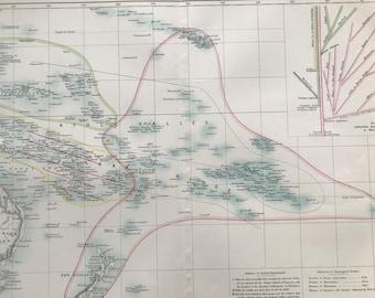 1875 Polynesia Original Antique Map with tree of Sawaiori, Malagasy, Tarpon & Malay Races - Pacific Islands- Hawaii - New Zealand