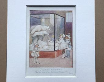 1919 Natural History Museum Original Vintage Margaret W. Tarrant Illustration - Available Framed - Nursery Decor - Children's Book