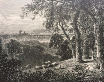 1874 View from West Park, Pennsylvania Original Antique Wood Engraving - Mounted and Matted - United States - Vintage Landscape Art