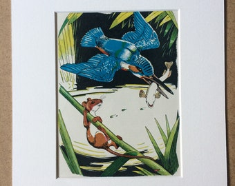 1940s Kingfisher, Minnow and Harvest Mouse Original Vintage Print - Cute Animal Illustration - Mounted and Matted - Available Framed