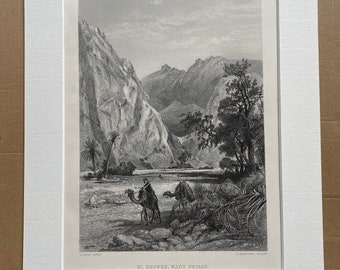 1880 El Hesweh, Wady Feiran Original Antique Engraving - Egypt - Mounted and Matted - Available Framed