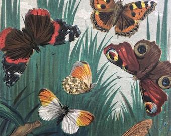 1859 Original Antique Lithograph - Butterflies & Moths - Vivid Colours - wall decor - home decor - Entomology - Insects - Butterfly