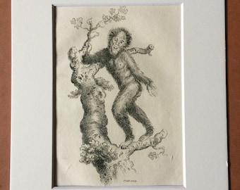 1800 Orang-utan Original Antique Engraving - Zoology - Natural History - Primate - Available Framed