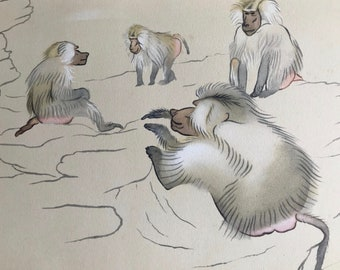 1937 Hamadryas Baboons Original Vintage Print - Mounted and Matted - Available Framed - Monkey - Primate - Natural History - Zoology