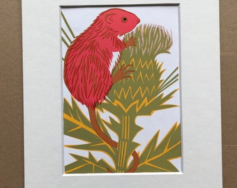 1958 Harvest Mouse Original Vintage Illustration - Mounted and Matted - Paper Cut Illustration - Colourful Wall Art - Available Framed