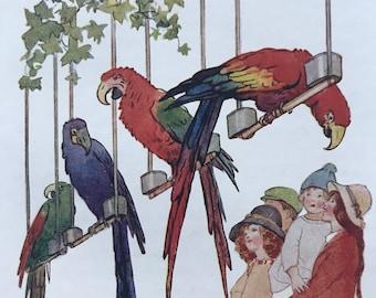 1919 Parrots Original Vintage Margaret W. Tarrant Illustration - Zoo - Animal Art - Available Framed - Nursery Decor - Children's Book