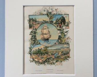 1880 Commerce Original Antique Print - Raising Harvest - A Tea Clipper - Olive Garden - Gathering and Packing Oranges - Tea Plantation