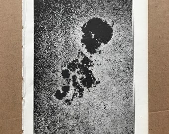 1899 Photograph of a Sun Spot, Dr Janssen Original Antique Print - Astronomy - Star - Constellation