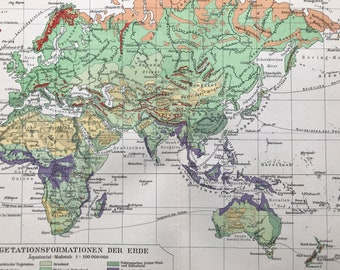 1924 Vegetation Formations of the Earth Original Antique Map - World Map