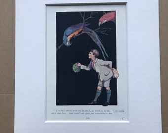 1919 Boy & Parrot Original Vintage Margaret W. Tarrant Illustration - Zoo - Animal Art - Available Framed - Nursery Decor - Children's Book